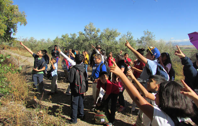Donate to Audubon's Education Programs