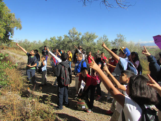Donate to Audubon's Education Programs